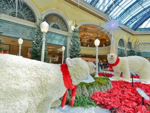 bellagio conservatory weight loss activities las vegas